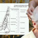 Technique de la Métamorphose