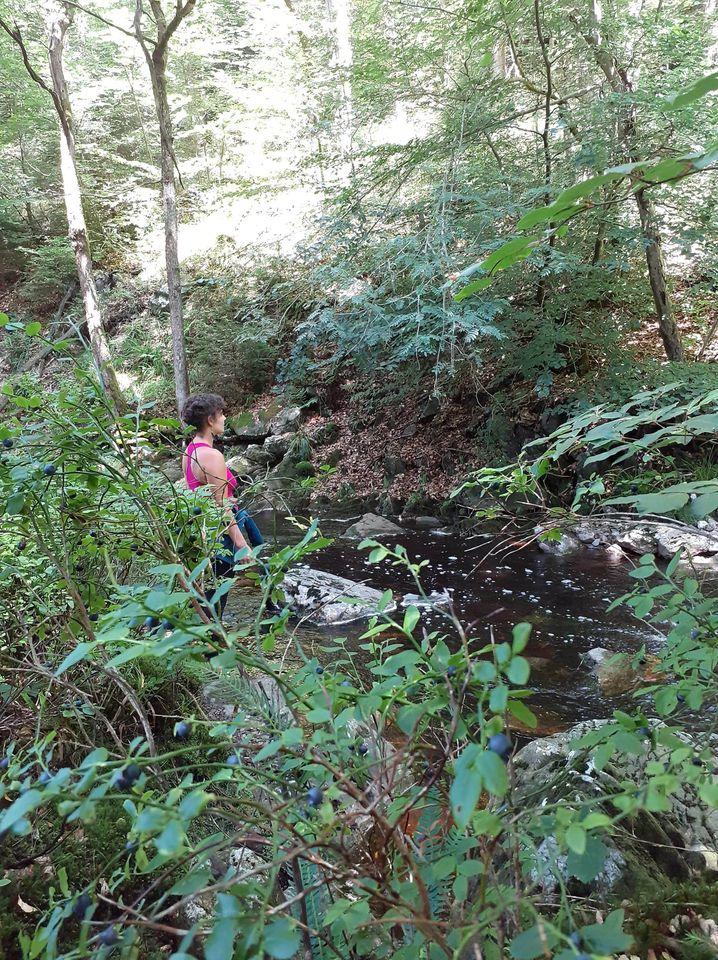 Bain de Forêt Et Méditation à Aywaille