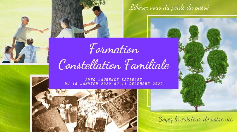 Formation en constellations Familiales