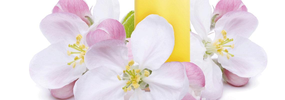 Formation Fleurs de Bach, l'âme des fleurs