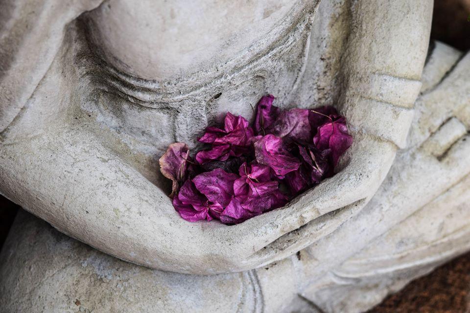"""Journée thématique """"Yoga, chemin de transformation : Parināma"""""""