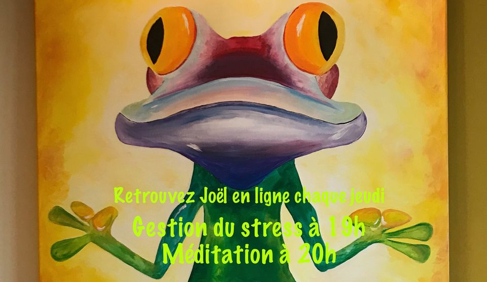 Séances en ligne gestion du stress/méditation