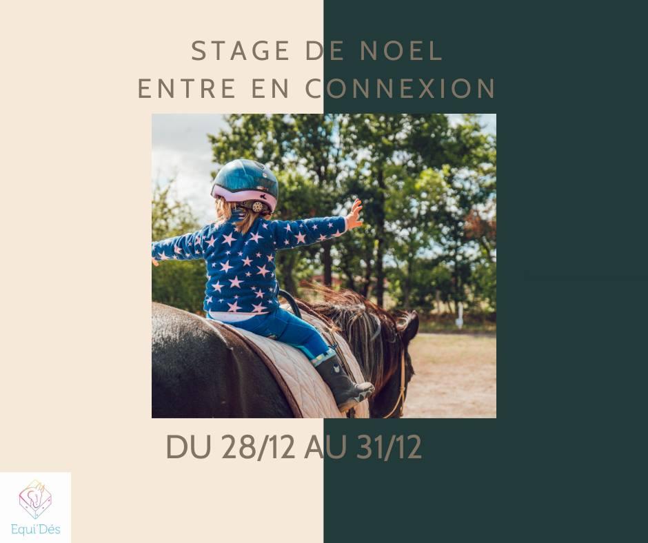 Stage de Noël equitation enfant – Entre en Connexion
