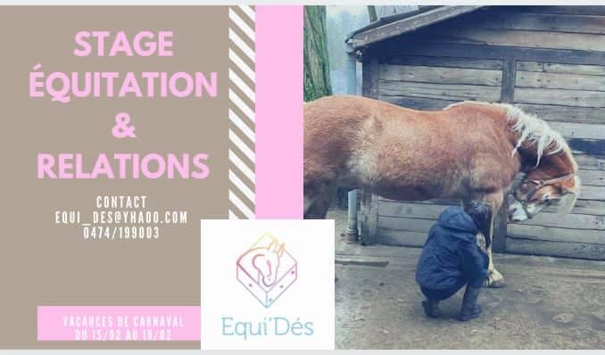 Stage vacances de carnaval : Équitation & Relations
